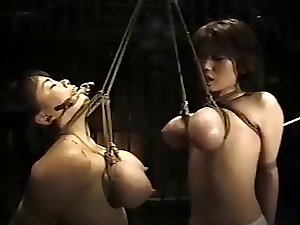 Oriental the two bust slavery
