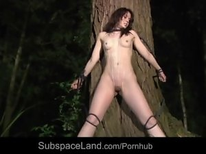 Servitude solemnity in the forests at midnight